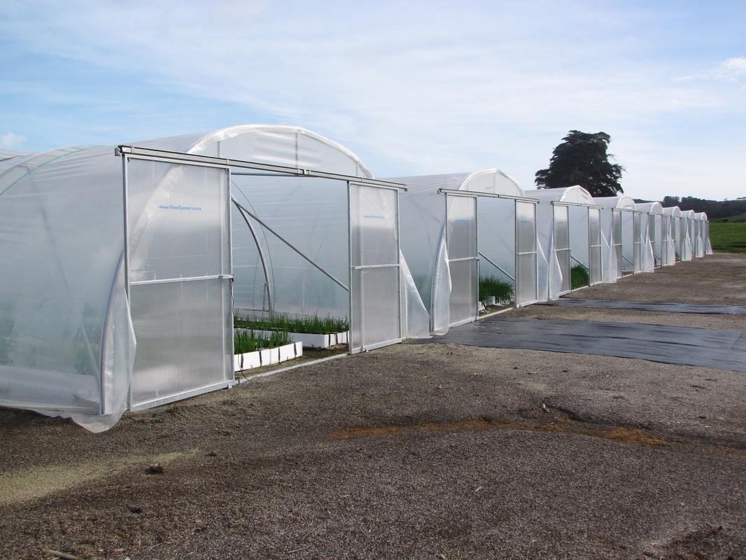 Growers Tunnelhouse